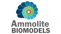 Ammolite BioModels